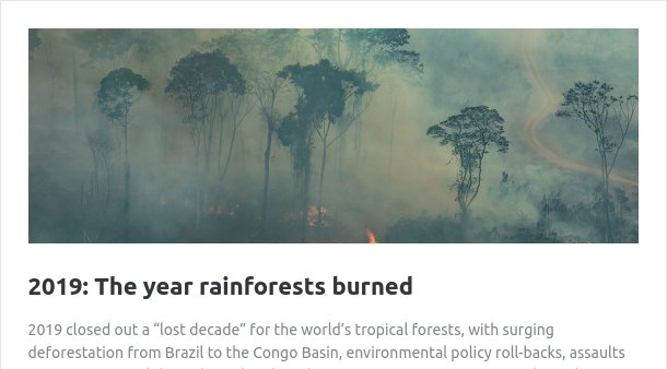 A picture above a link to an article on 2019, the year that the  rainforests first started burning because of climate change induced drought.